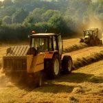 Técnico em Agropecuária – Embu das Artes